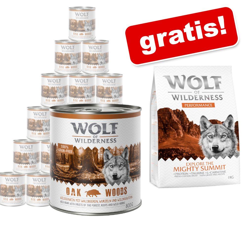 Sparpaket Wolf of Wilderness Adult 24 x 800 g + 1 kg Performance gratis! - NEU: The Taste Of The Savanna