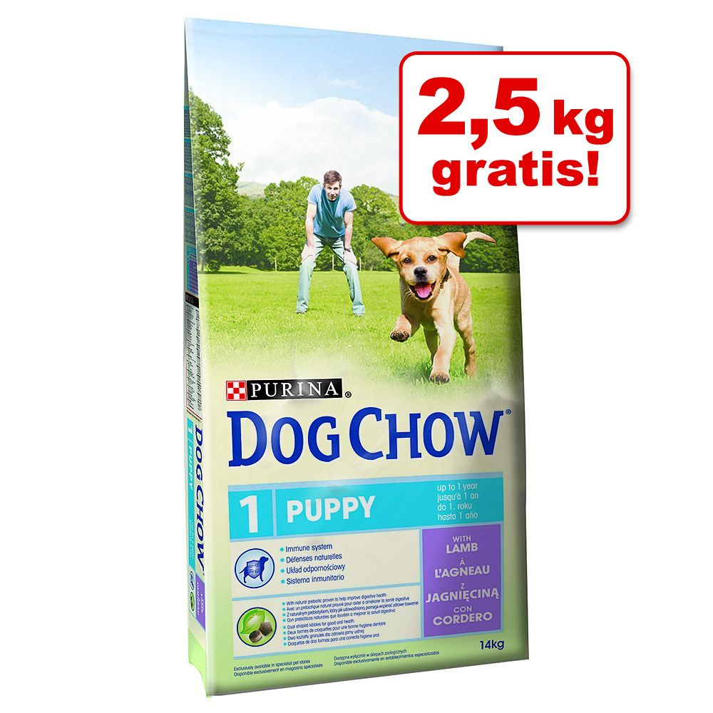 Foto 14 kg + 2,5 kg gratis! 16,5 kg Bonusbag Purina Dog Chow (ex Tonus) - Puppy Agnello & Riso Purina Dog Chow Adult