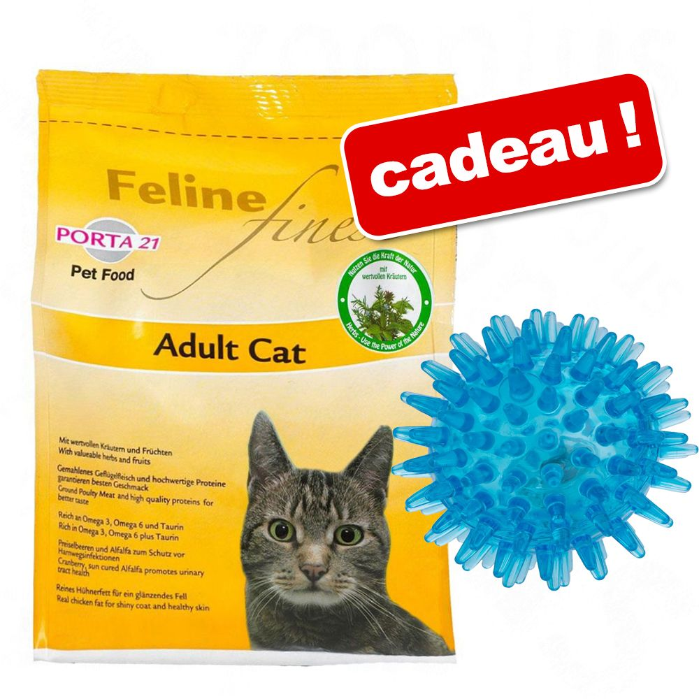 Chat Croquettes Porta 21