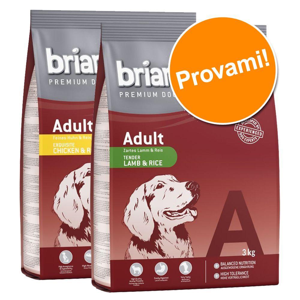 Image of Set prova misto! 2 x 3 kg Briantos Adult - Agnello & Riso + Salmone & Riso