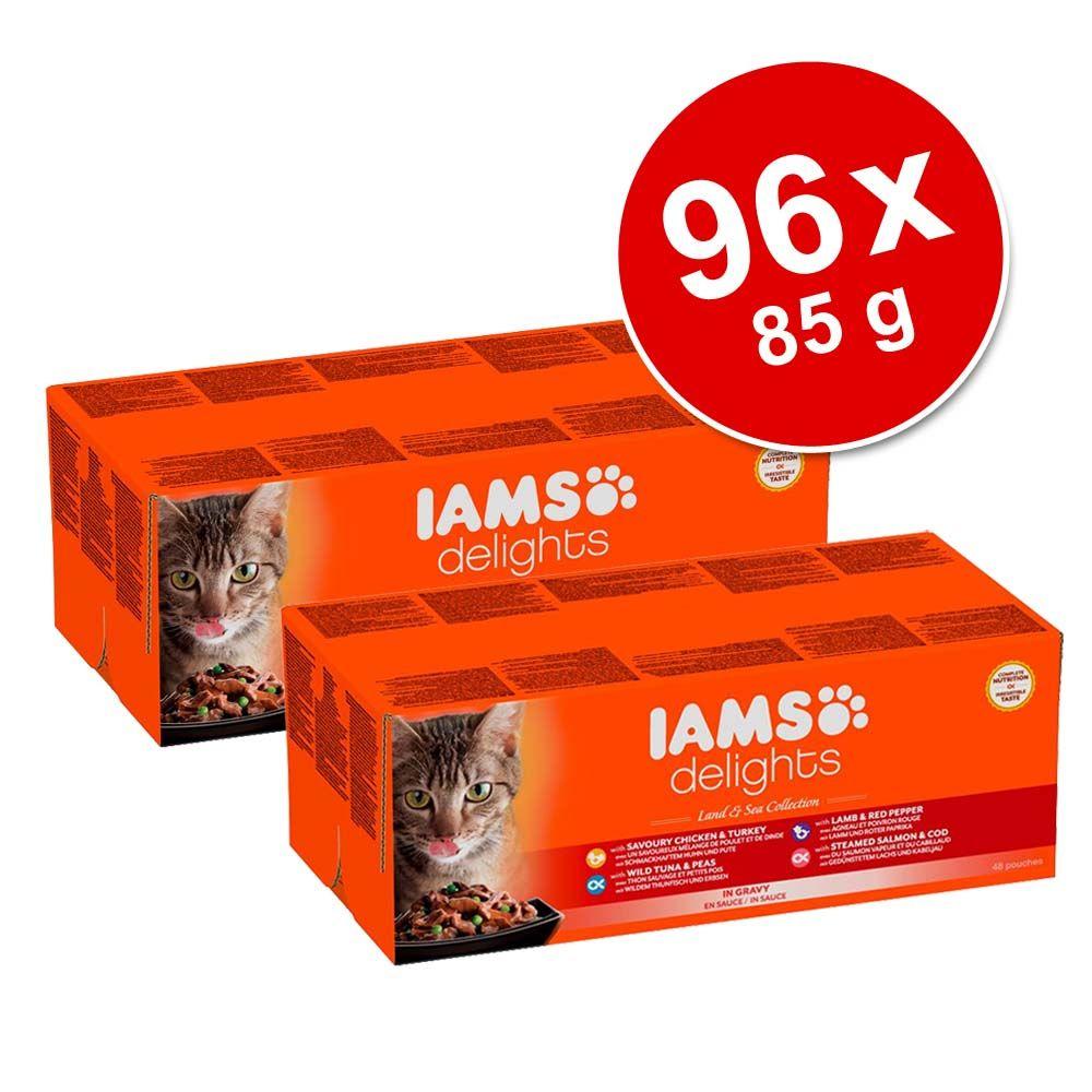 Megapakiet IAMS Adult Del