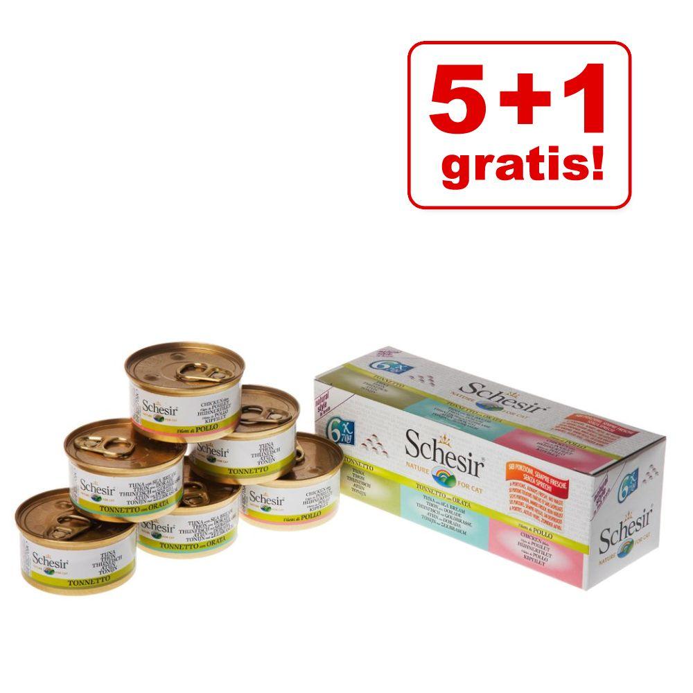 5 + 1 gratis! 6 x 70 g / 75 g / 85 g Schesir Mix - Jelly Pouch: Hühnerfilet + Hühnerfilet mit Schinken (6 x 85 g)