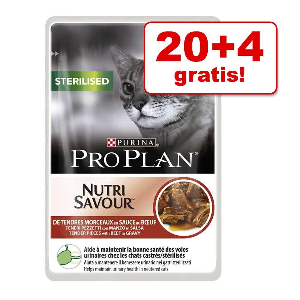 20 + 4 gratis! Karma mokra Pro Plan, 24 x 85 g - Ryba oceaniczna