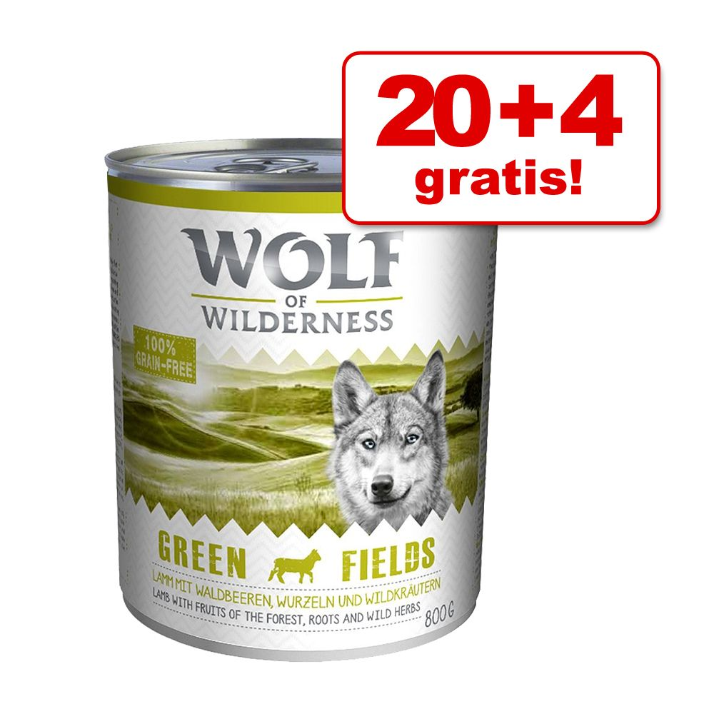 20 + 4 gratis! Wolf of Wilderness Adult, 24 x 800 g - Oak Woods, dzik