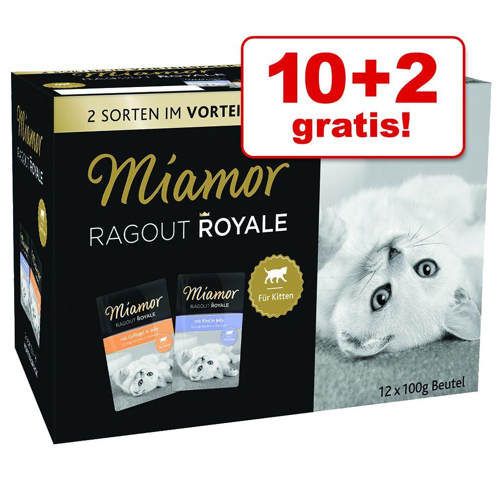 10 + 2 gratis! Pakiet próbny Miamor Ragout Royale, 12 x 100 g - Kitten, Drób i wołowina w galarecie