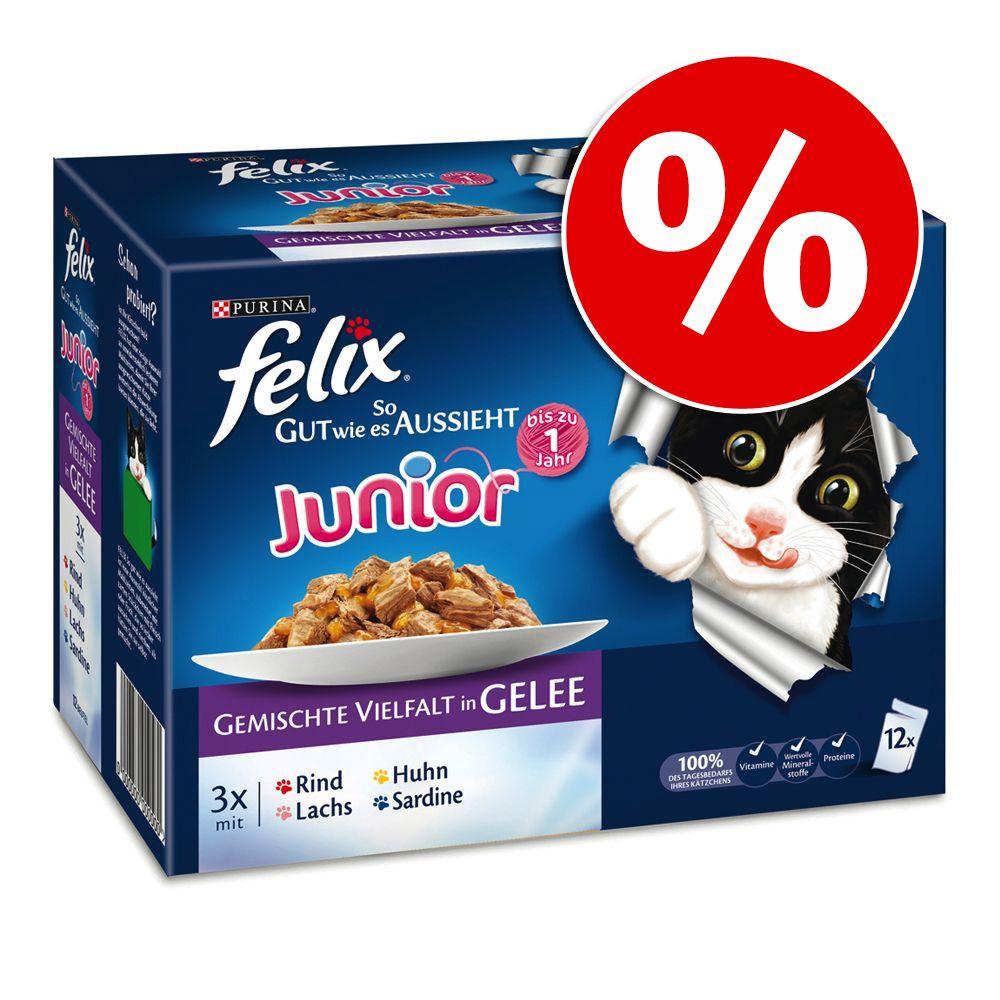 72 x 100 g Felix Junior/S
