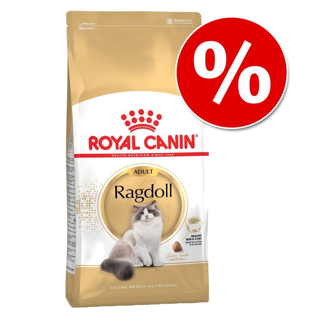 10 kg Royal Canin Breed kattfoder till extra lågt pris! British Shorthair Kitten