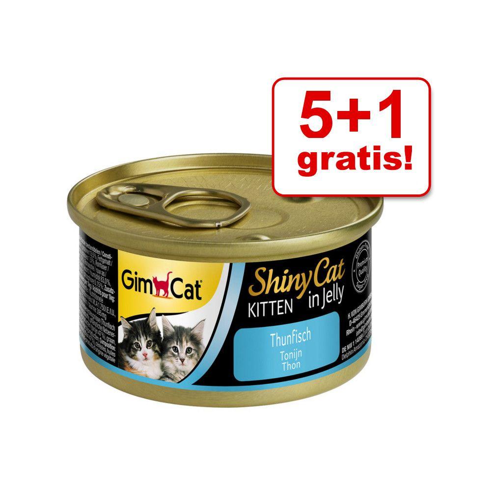 5 + 1 gratis! GimCat Shin