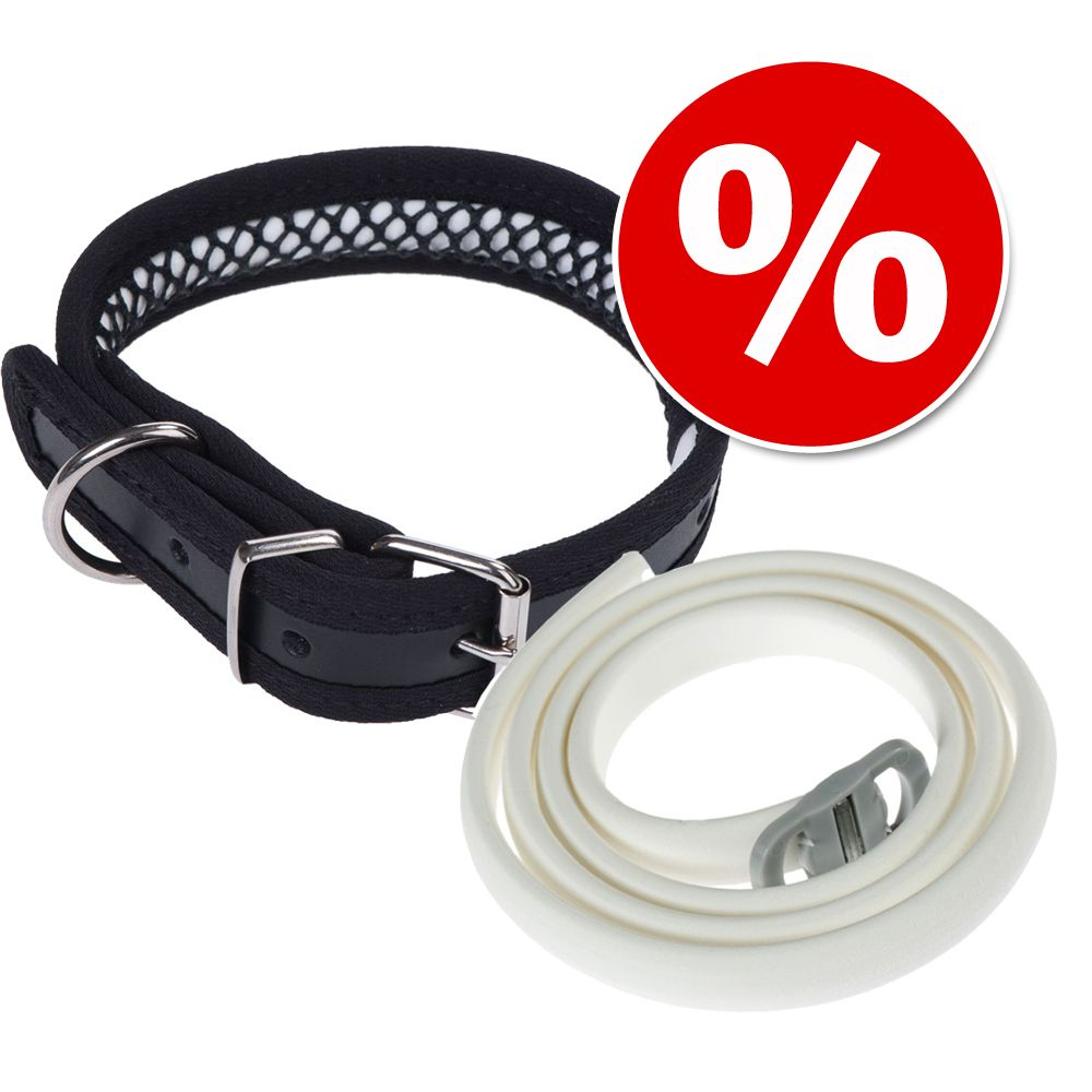 Sparset: Leder-Halsband + Scalibor® Protectorba...