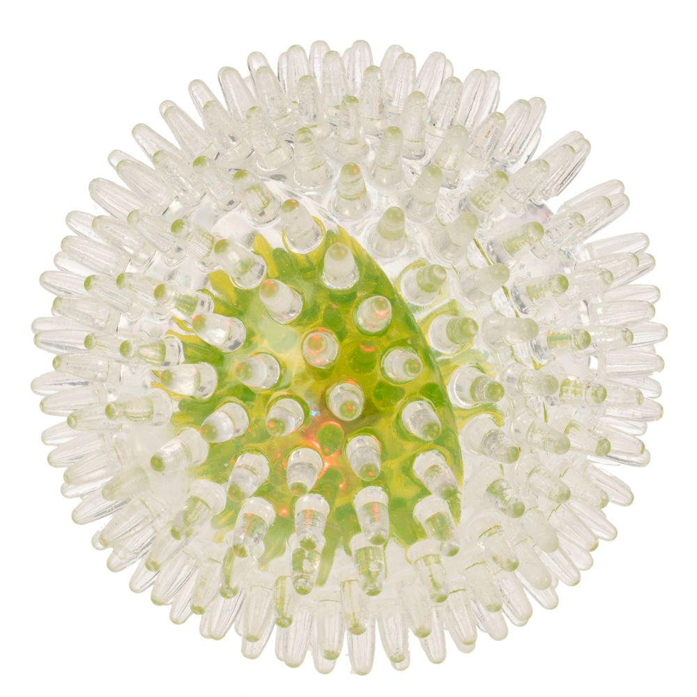 Spiky Flash Ball Dog Toy