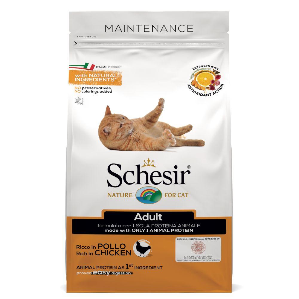 Schesir Adult Maintenance med kyckling Ekonomipack: 2 x 10 kg