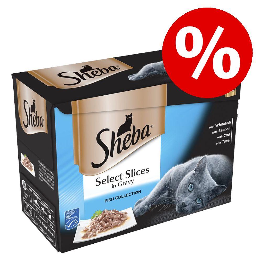 20 % rabatt! 96 x 85 g Sheba kattmat Sauce Speciale portionsform