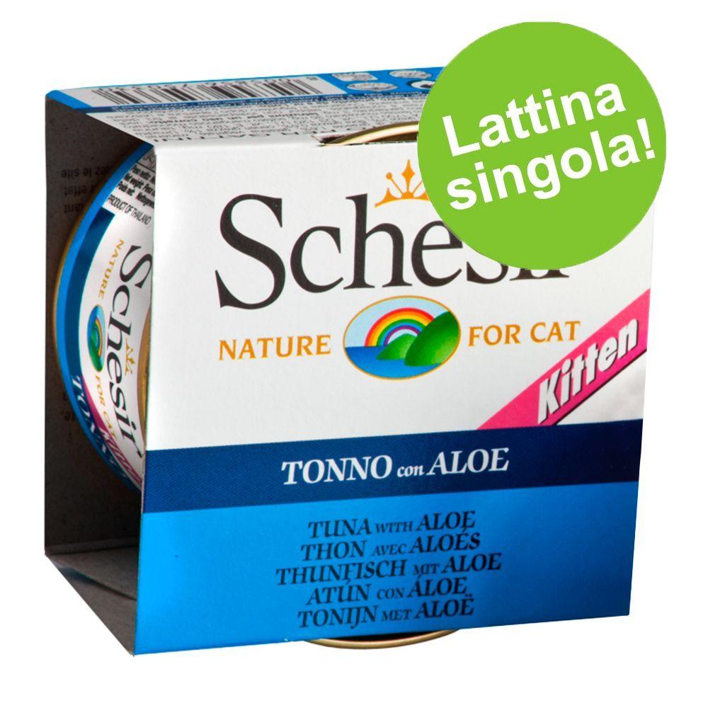 Image of Schesir in Gelatina Kitten 1 x 85 g - Tonnetto con Aloe