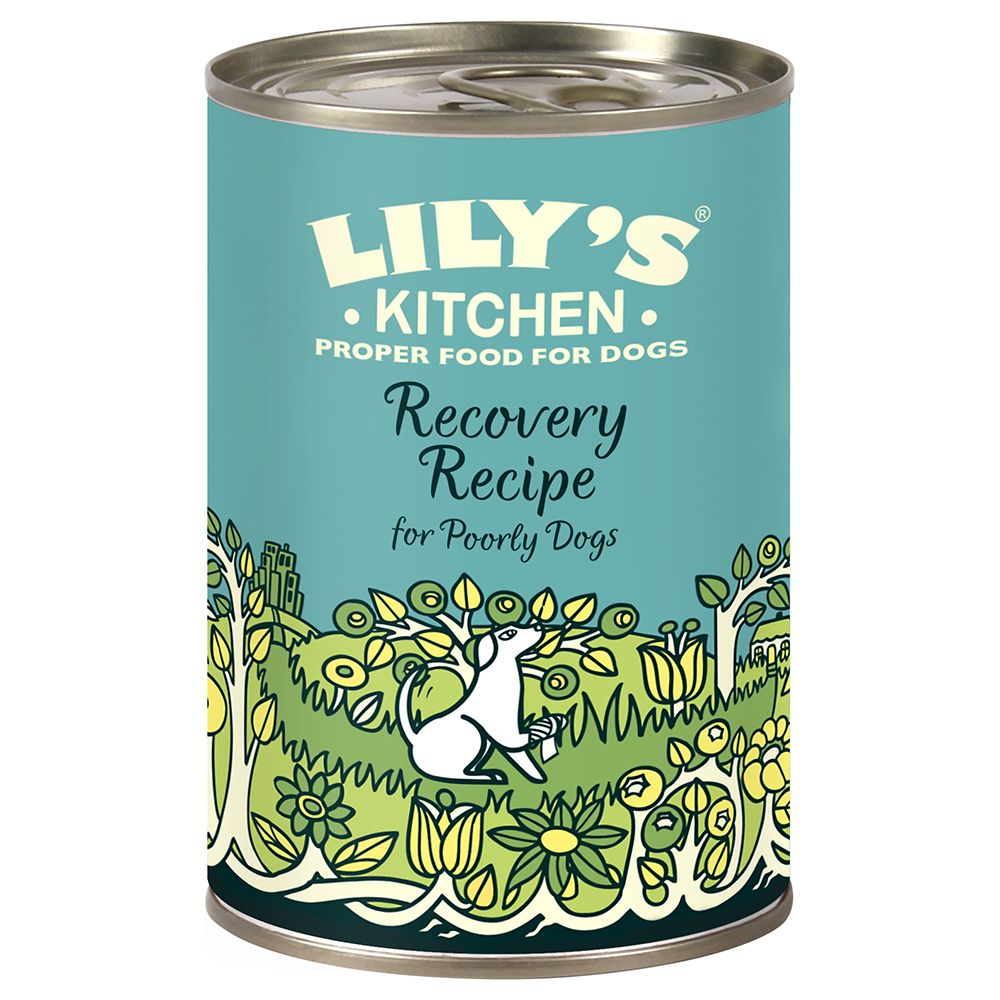 Lily's Kitchen Recovery Recipe for Dogs - Saver Pack: 24 x 400g