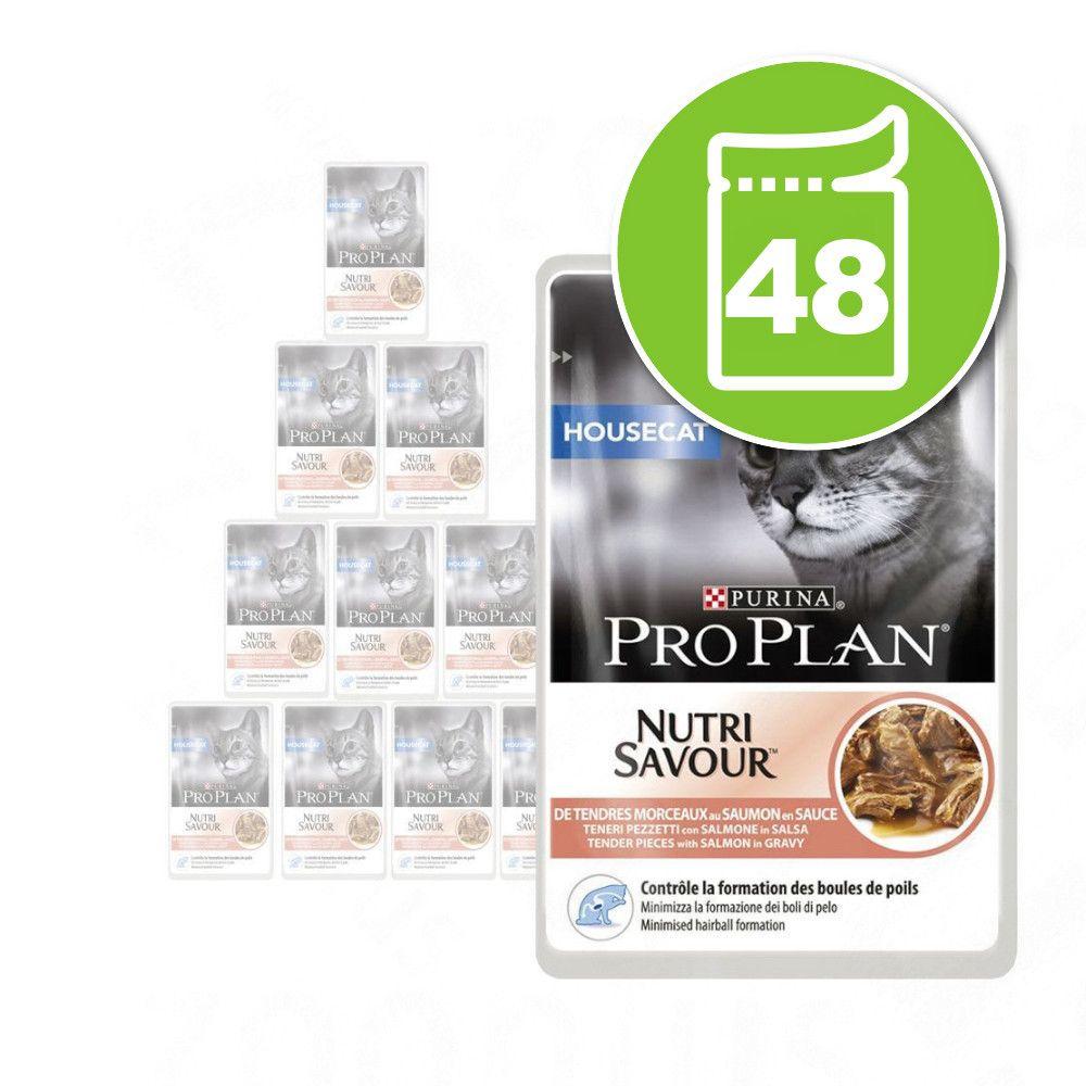 48x85g Delicate dinde Pro Plan - Pâtée pour chat