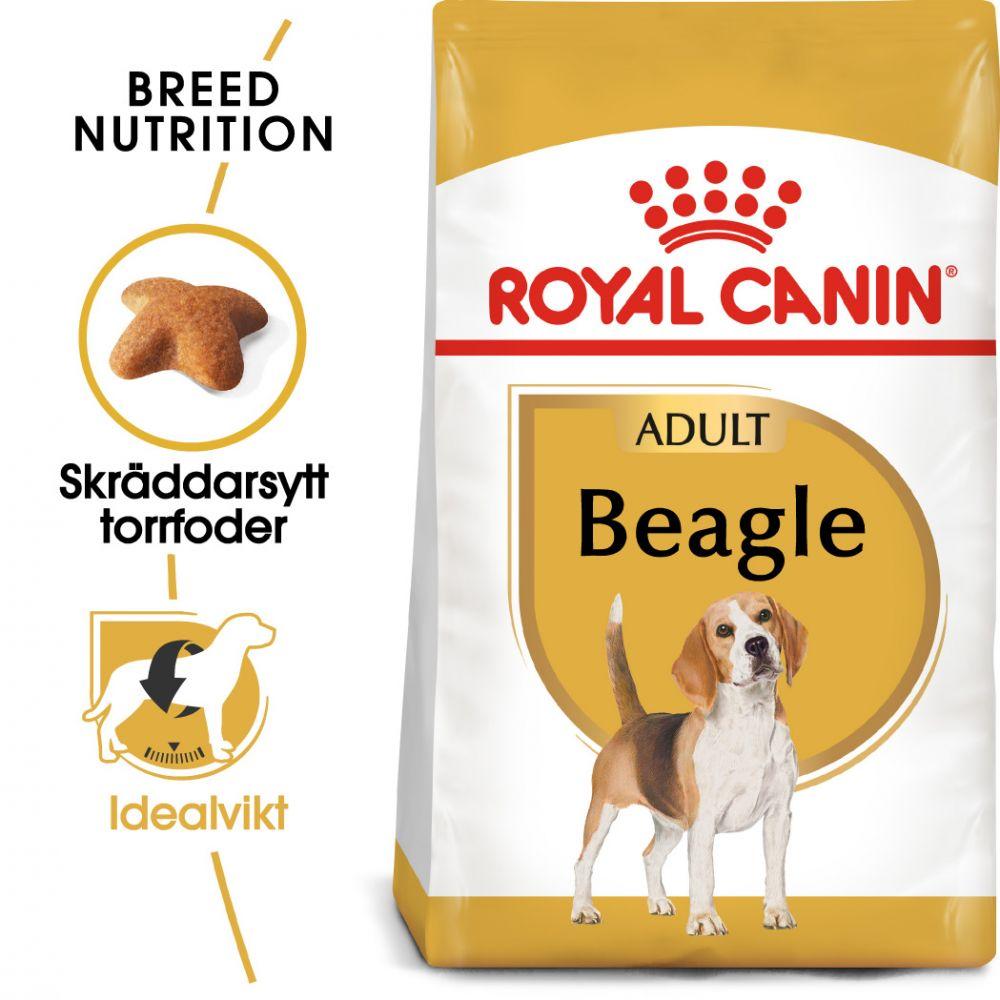 Royal Canin Beagle Adult - Ekonomipack: 2 x 12 kg