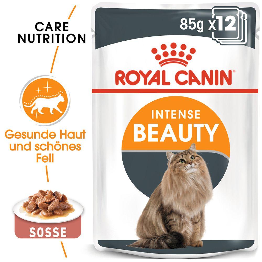 Royal Canin Intense Beauty in Soße - 12 x 85 g