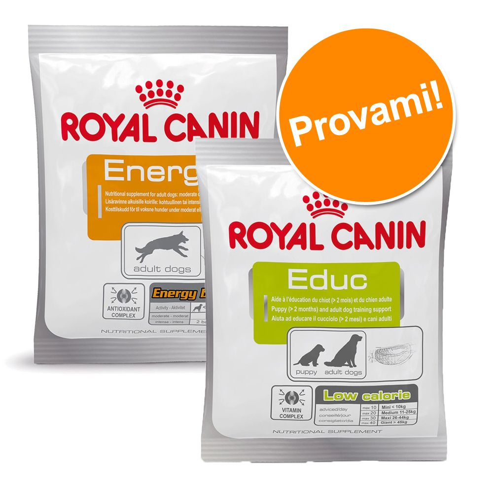Image of Set prova misto! Snack Royal Canin 10 x 50 g - 2 snack assortiti