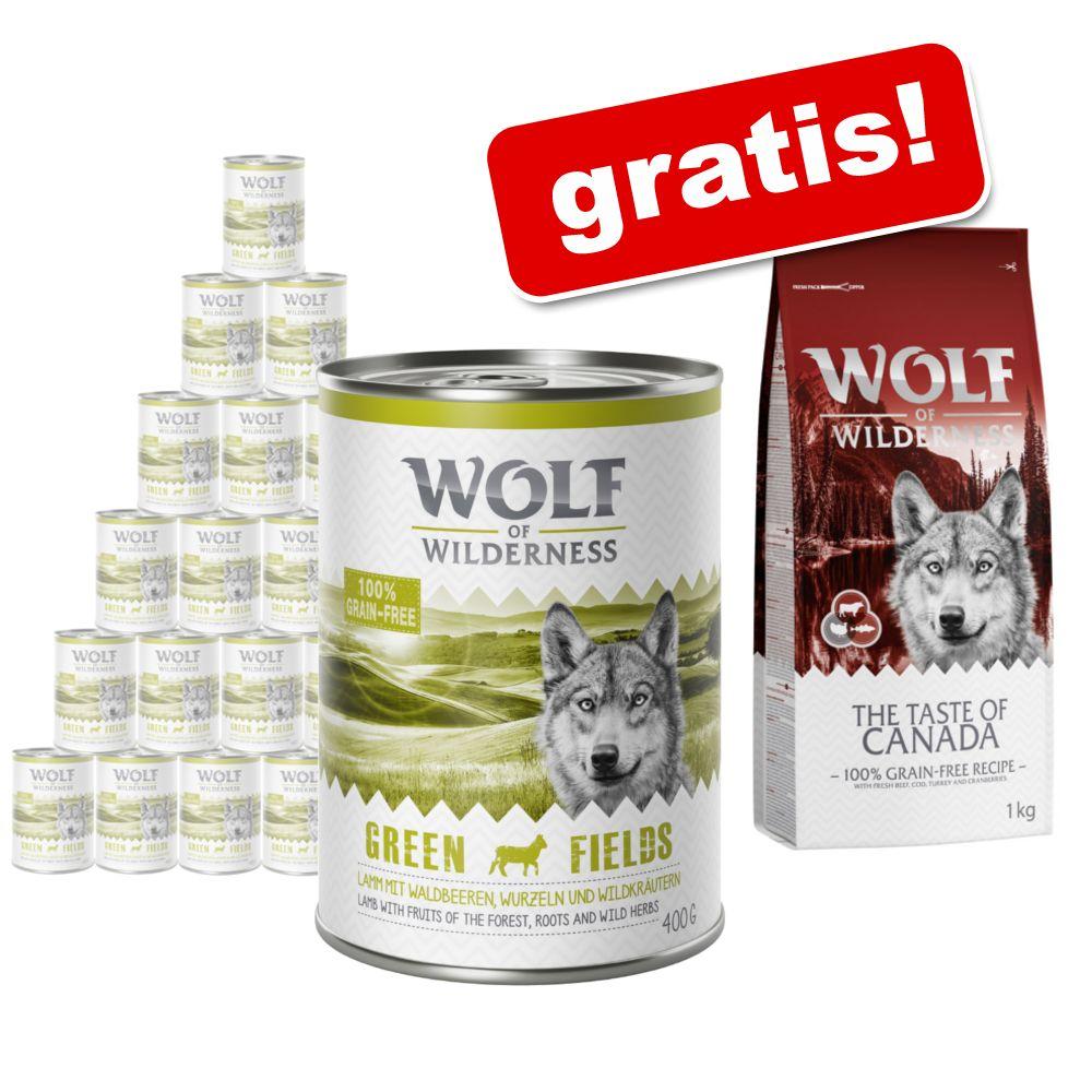 Wolf of Wilderness: Nassfutter 24 x 400 g + gra...