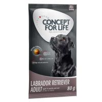 Concept for Life - 80g Trial Pack - Labrador Retriever Adult