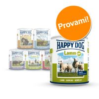12 x 800 g happy dog pur - - manzo puro.