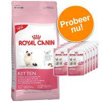 Royal Canin Kattenvoer Kitten Proefpakket Maine Coon Kitten t-m 15 Maanden (4 kg)