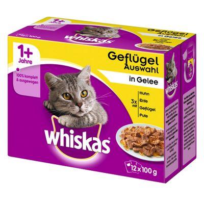 Whiskas 1+ Adult Pouches 12 x 85 g / 100 g - Ragout hyytelösekoitus