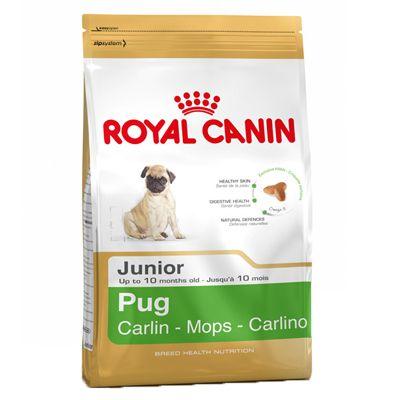 Royal Canin Pug Junior -