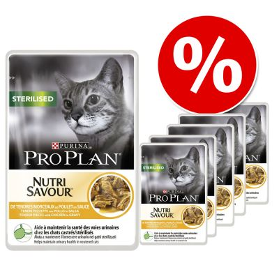 Pro Plan -säästöpakkaus 24 x 85 g - Housecat, lohi