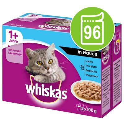 Säästöpakkaus: Whiskas 1+ Adult Pouches 96 x 85 g / 100 g - 96 x 85 g Ragout-valikoima hyytelössä