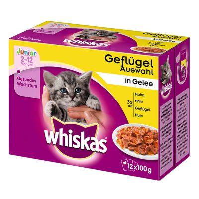 Whiskas Junior w saszetkach, 12 x 100 g - Wybór dań drobiowych w galarecie