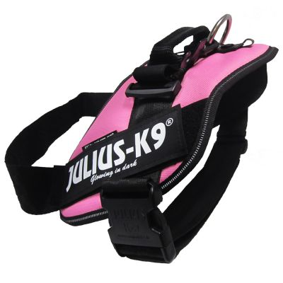 JULIUS-K9 IDC® Power -koiranvaljaat, vaaleanpunainen - rinnanympärys 33 - 45 cm (Baby 2 -koko)