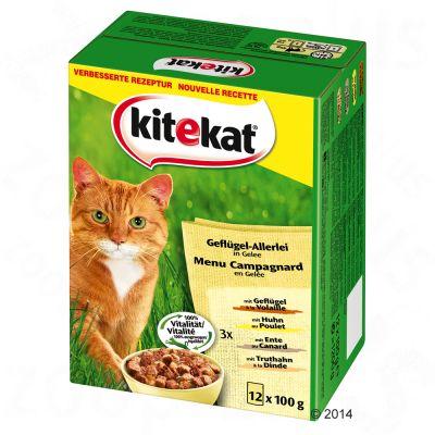kitekat-verszakjes-kattenvoer-12-x-100-g-markt-mix