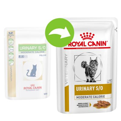Royal Canin Feline Urinary S/O Moderate Calorie - Veterinary Diet - 12 x 85 g makupalat kastikkeessa