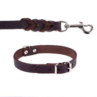 heim-set-lederen-riem-doorgestoken-halsband-bruin-halsband-maat-50-lijn-200-cm