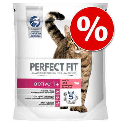 Perfect Fit -kissanruoka erikoishintaan! - Active 1+ Rich in Beef (1,4 kg)