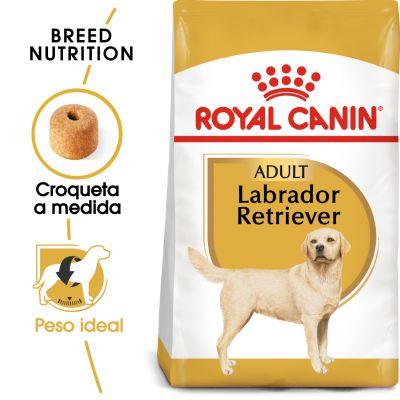 Royal Canin Labrador Retriever Adult - 2 x 12 kg - Pack Ahorro