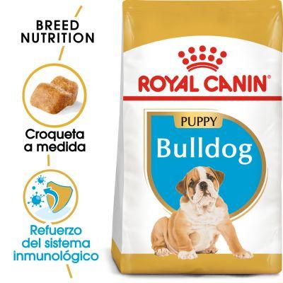 Royal Canin Bulldog Puppy - 2 x 12 kg - Pack Ahorro
