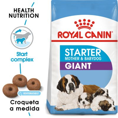 Royal Canin Giant Starter Madre y Cachorro - 2 x 15 kg - Pack Ahorro