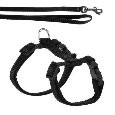Kitten Harness With Lead - Black
