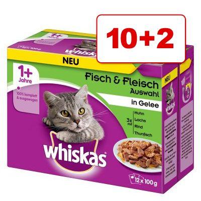 Whiskas 1+ Pouches kissanruoka 12 x 100 g: 10 + 2 kaupan päälle! - 1+ siipikarjavalikoima kastikkeessa