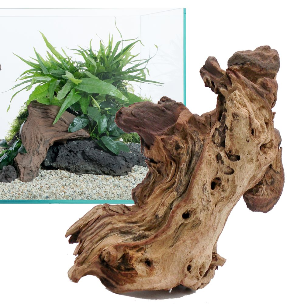 Mopani Wood - Aquarium Decoration