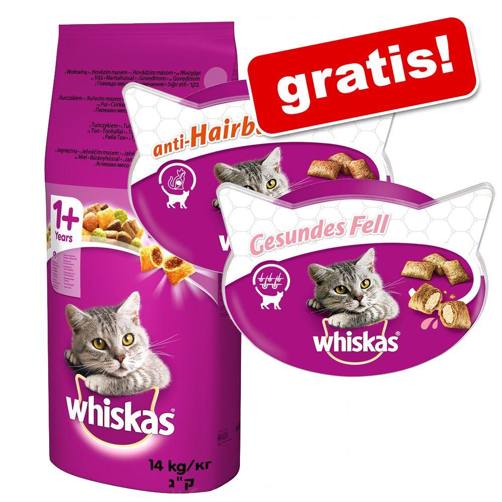 14kg 1+ Rind Whiskas Katzentrockenfutter 2 x snacks gratis!