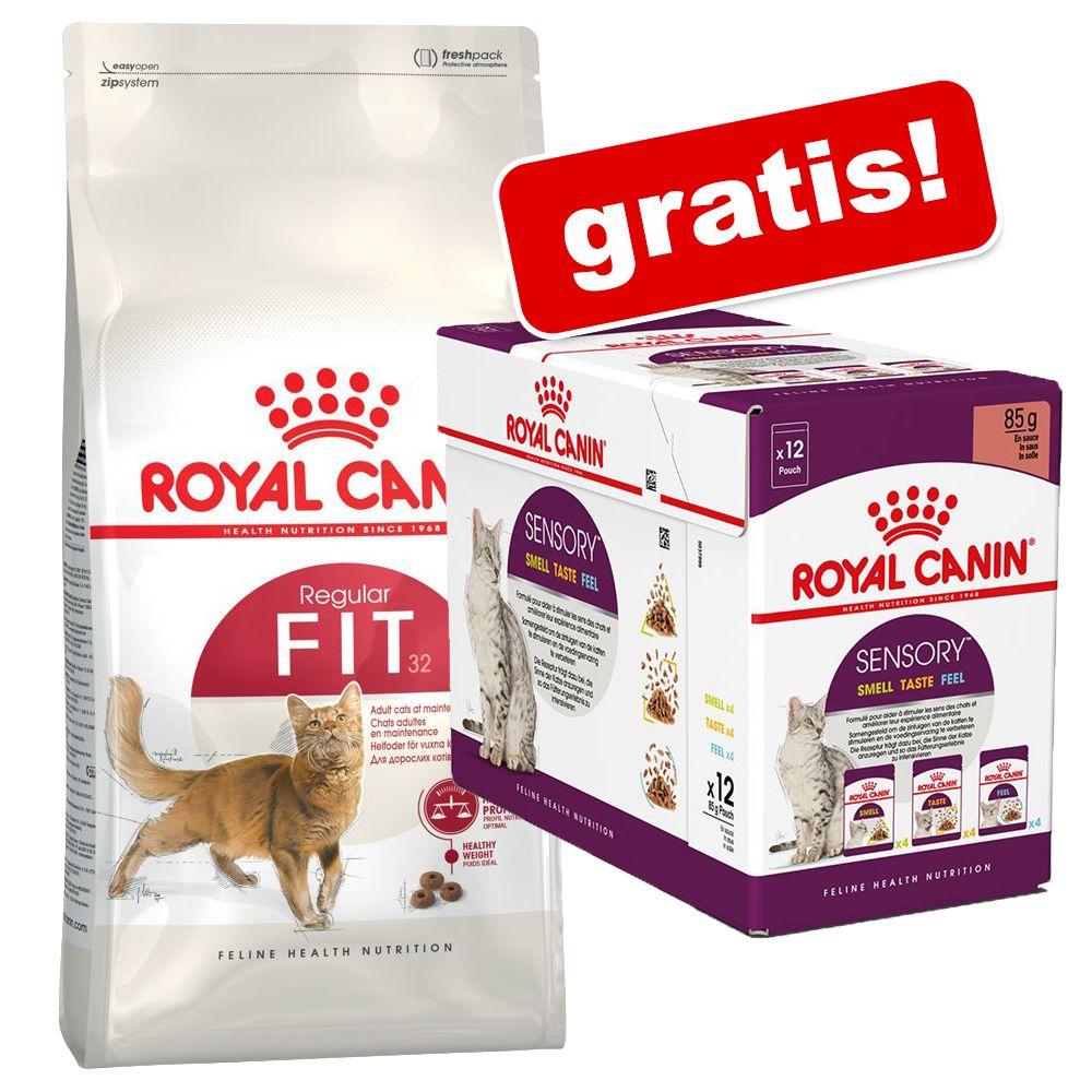 10 kg Royal Canin torrfoder+ 12 x 85 g Sensory i sås på köpet - Indoor 27