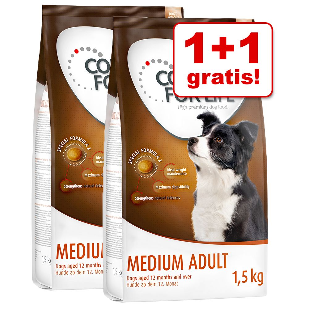 1+1 gratis! Concept for Life karma sucha dla psa, 2 x 1,5 kg - Medium Senior