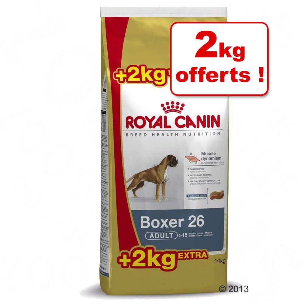 Image of 12+2kg Golden Retriever Adult Royal Canin Breed Croquettes
