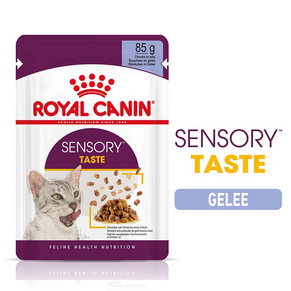 Royal Canin Sensory Taste in Jelly - 48 x 85 g