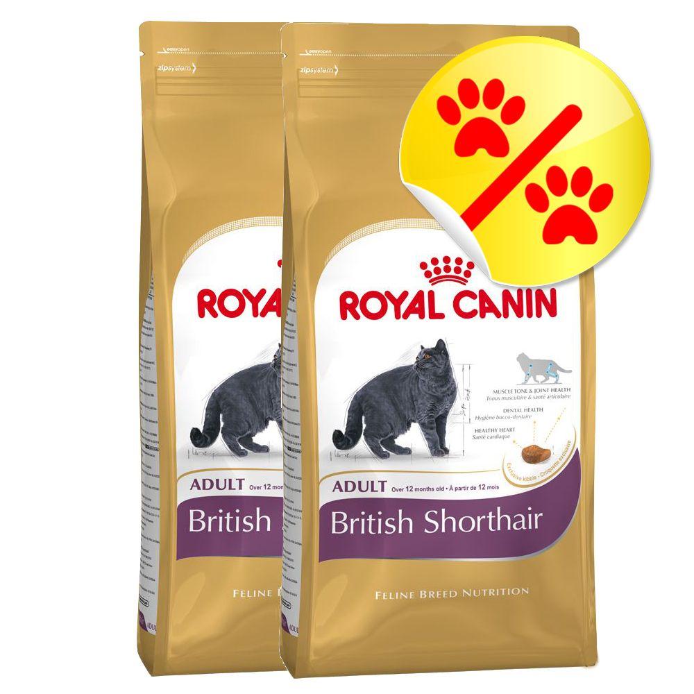 royal canin adult british shorthair 10 kg preisvergleich katzenfutter g nstig kaufen bei. Black Bedroom Furniture Sets. Home Design Ideas