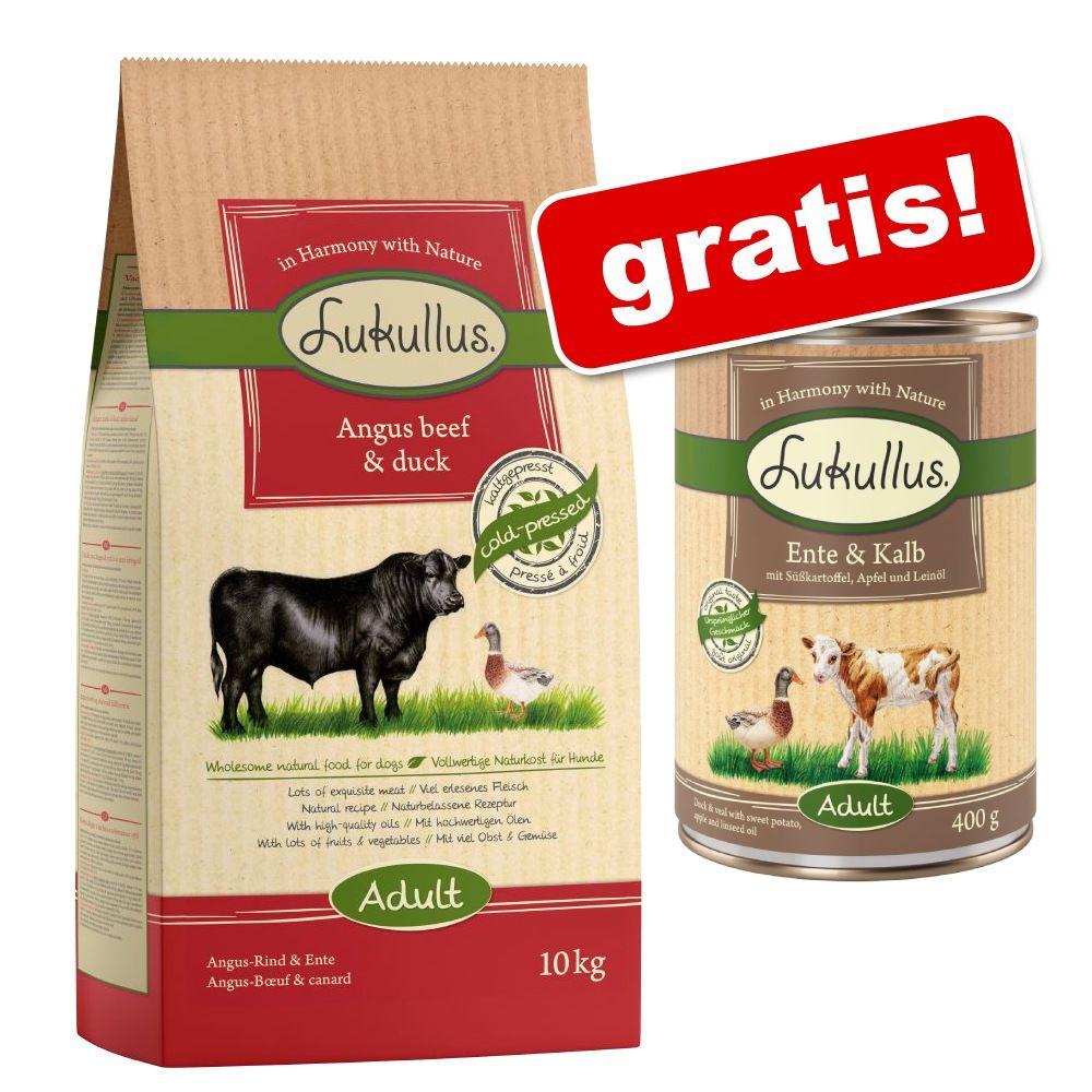 Großgebinde Lukullus Adult Trockenfutter + 6 x 400 g Lukullus Nassfutter gratis! - Adult Veggie (15 kg) + Lachs & Huhn