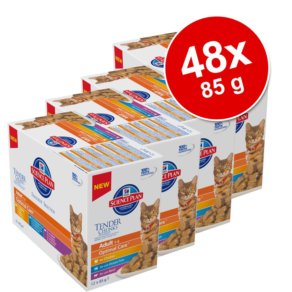 Foto Hill's Feline Megapack assortito 48 x 85 g - Kitten Fantasia di Carne e di Pesce Hill's Science Plan Set risparmio